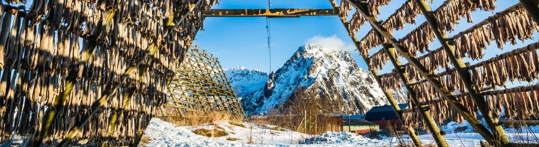 Concluso il primo modulo formativo Qualivita per le imprese food norvegesi