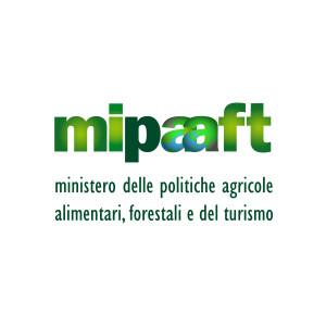 LOGO MIPAFT QUAD