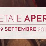 Cultura balsamica, musica live ed auto d'epoca per Acetaie Aperte 2019